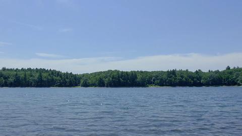 瓦尔登湖不复当年纯净 研究称人类活动为始作俑者