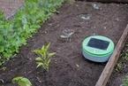 除草机器人Tertill面世 可自动巡视花园