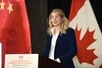 加拿大文化部长:盼中国多来投资游戏行业