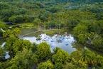 专访|邓小刚:海南将建设热带雨林和海洋两类国家公园