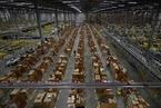 亚马逊商业帝国一览 不仅是电商