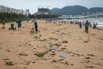 公益组织开展海滩垃圾品牌监测 饮品居首