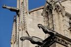 危旧建筑巴黎圣母院