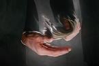 报告指企业家腐败风险上升 日常经营环节成重灾区