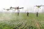 国际农化巨头热衷与中国无人机企业联姻