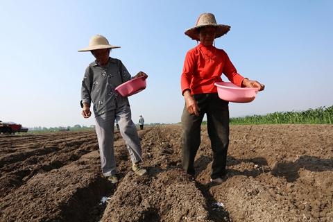 陈锡文:不能把农民抛弃在现代化之外
