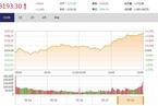今日收盘:油气股掀涨停潮 沪指午后走强涨逾1%
