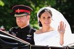 哈里王子要结婚了,最激动的却是美国人