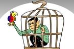 学者反思深圳鹦鹉案:人工驯养与纯野生动物应有所区别