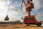 中国承诺增加美国农产品进口 新一轮农业开放即将到来?