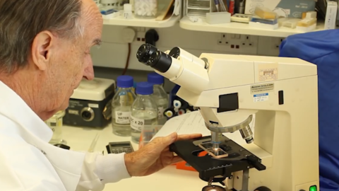 英国科学家发现 无菌生活方式或导致儿童患癌