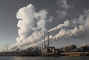二氧化碳浓度升高导致生物灭绝 这一过程可能重演
