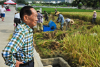 袁隆平:五年内第三代杂交水稻推广至千万亩