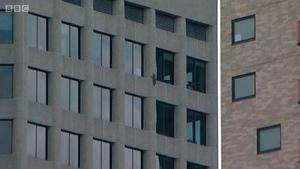 美一只小浣熊攀爬23层高楼引发围观