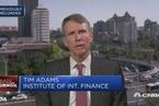 国际金融协会总裁:中国投资者正在美国之外开拓市场
