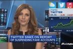 关停7000万虚假账户引担忧 推特股价周一收跌5%