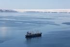 全球五大磷虾企业承诺 停止部分南极捕捞