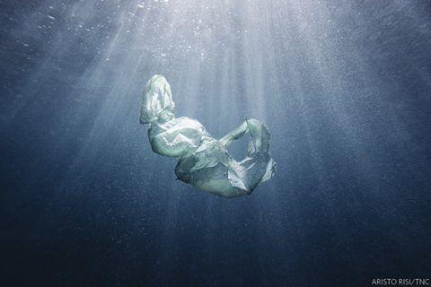 各国禁塑效果大不同 中国塑料包装垃圾仍最多