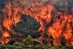希腊森林大火已致74人遇难 尚未发现中国公民伤亡
