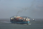 飞马峰号大豆船将卸货 并依法缴纳税费