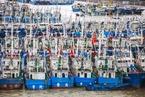 多个台风袭扰 上海宁波港口船舶拥堵