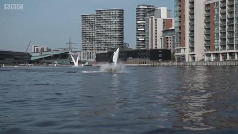 超炫的鲸鱼形快艇