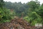 常德巨型酸水坑后续:省委书记批示 已开始治理