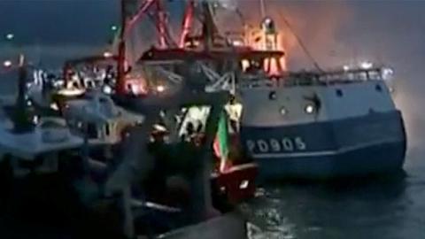 英法就捕捞扇贝问题达成一致