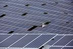 能源局推进无补贴集中式光伏电站 多家企业启动规划