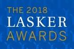 2018年拉斯克奖公布,三个关键词:组蛋白修饰、麻醉以及RNA研究