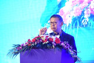 上海,嘉定,菊园,科技,创新,优化营商环境