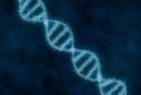 饶毅:中国的人类基因研究为什么弱?