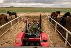 显影|扶贫影像纪实系列——草原小城的脱贫样本