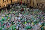 欧盟禁塑令提速 研究者在人粪便中检出微塑料
