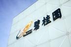 碧桂园拟以18.5亿元向杨国强胞妹转让资产包