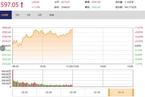今日午盘:消费股反弹 沪指再攻2600点涨1.13%