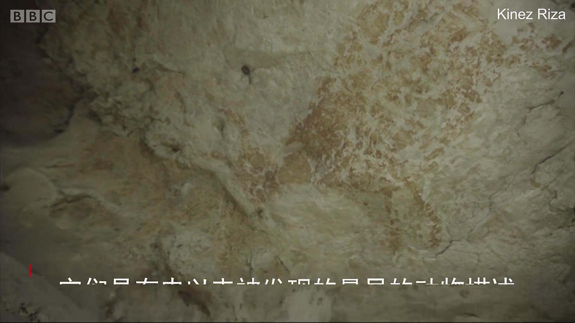 历史长达四万年的画作