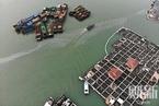 泉港碳九泄露事故7名责任人被批捕
