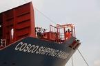 中远海能子公司高管在台坠楼身亡
