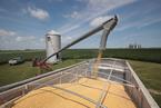 能源内参|中美贸易谈判涵盖农业和能源产品采购;美国原油库存下降不及预期