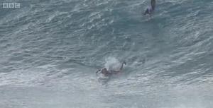 冲浪手的惊魂一刻