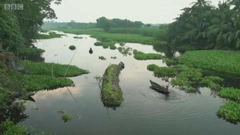漂浮在水中的孟加拉国农田