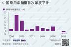 中国车市28年来首次负增长 乘用车销量下滑4.1%