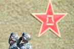 新华社:陆军占全军总员额比例下降到50%以下