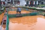 广西铝业污染后续:泥浆泄漏致地下水系异常