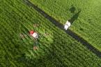 防止强迫性地盘流转 小农地盘权益若何包管?
