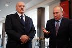 """白俄罗斯总统称将与北约发展关系 哪怕俄罗斯将""""歇斯底里"""""""