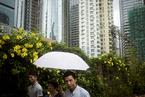 楼市观察 房贷利率下调刺激楼市 深圳房价止跌回升