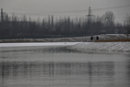仲志余委员:南水北调用水需求强烈 供水能力难保证