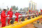 能源内参 国家管网公司组建提速;中石油思想政治部总经理曲广学被查